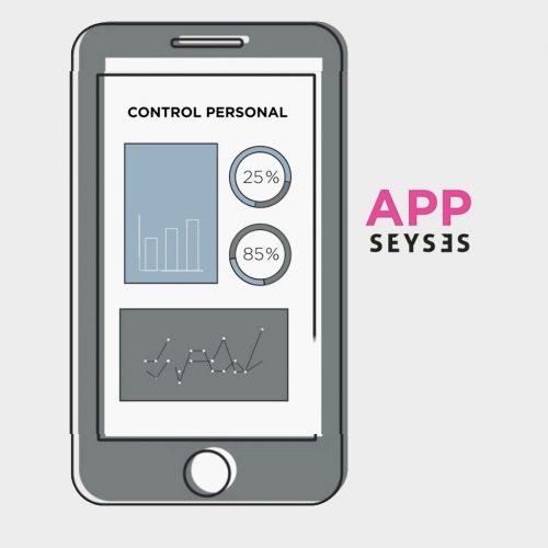 control-personal-seyses-1