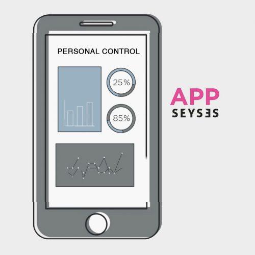 control-personal-seyses-en
