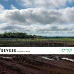 Portada-SEYSES-enel-energia-gestion-documental